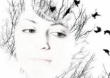 Sarah Taisne Webdesign
